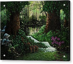 Forest Brook Acrylic Print by Michael Frank