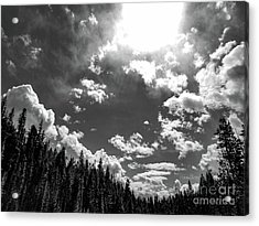 A New Day, Black And White Acrylic Print
