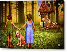 Forest Discovery Acrylic Print by John Haldane