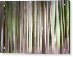 Forest Fantasy 3 Acrylic Print