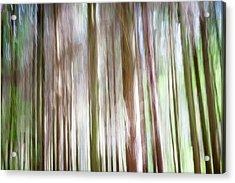 Forest Fantasy 4 Acrylic Print