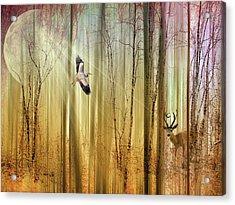 Forest Fantasy  Acrylic Print by Jessica Jenney