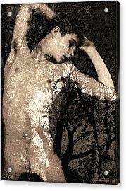 Forest Fantasy Acrylic Print