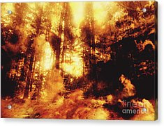 Forest Fires Acrylic Print