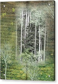 Forest For The Trees Acrylic Print by Nadine Berg