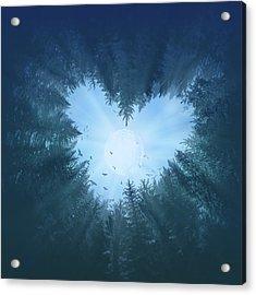 Forest Heart 2 Acrylic Print