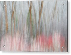 Forest Impression 2 Acrylic Print by Leland D Howard