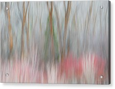 Forest Impression 3 Acrylic Print by Leland D Howard