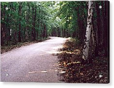 Acrylic Print featuring the photograph Forest In The Road Wc 2 by Lyle Crump