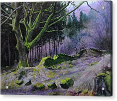 Forest In Wales Acrylic Print by Harry Robertson