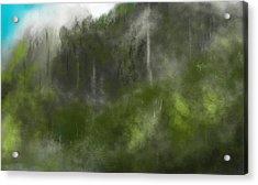 Forest Landscape 10-31-09 Acrylic Print by David Lane