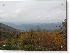 Forest Landscape View Acrylic Print