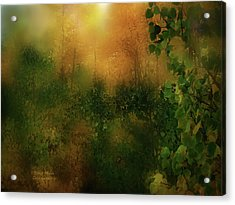 Forest Moods Acrylic Print