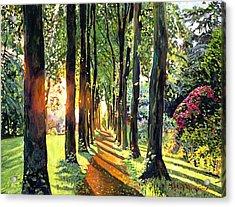Forest Of Enchantment Acrylic Print by David Lloyd Glover