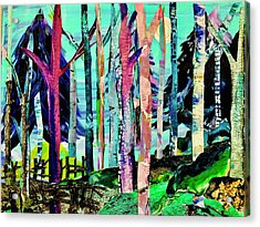 Forest Of Evening Whimsy Acrylic Print