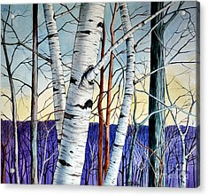 Forest Of Trees Acrylic Print