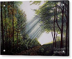 Forest Pathway Acrylic Print by Judy Kirouac