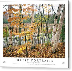 Forest Portraits Acrylic Print by Steven Tryon