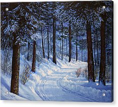 Forest Road Acrylic Print by Frank Wilson