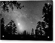 Forest Silhouettes Constellation Astronomy Gazing Acrylic Print by James BO  Insogna