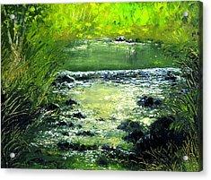 Forest Stream Acrylic Print