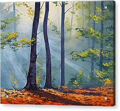 Forest Sunrays Acrylic Print by Graham Gercken