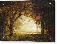 Forest Sunrise Acrylic Print by Albert Bierstadt