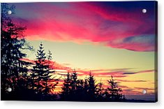Forest Sunset Acrylic Print
