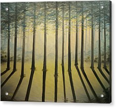 Forest Thru The Trees II Acrylic Print