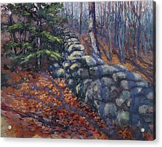 Forest Wall Acrylic Print