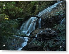 Forest Waterfall. Acrylic Print