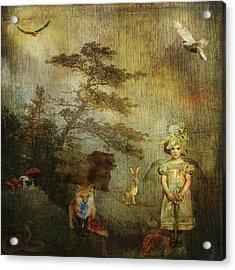 Forest Wonderland Acrylic Print by Diana Boyd