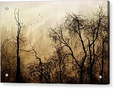 Forever Autumn Acrylic Print by John Poon