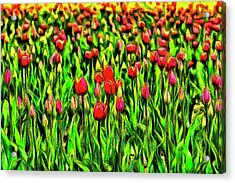 Forever Tulips Acrylic Print