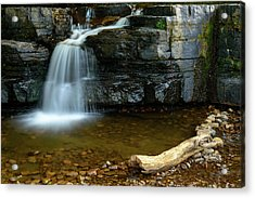Forged By Nature Acrylic Print