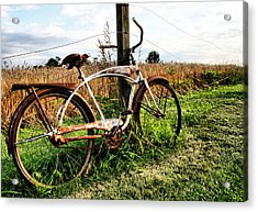 Forgotten Bicycle Acrylic Print by Doug Hockman Photography