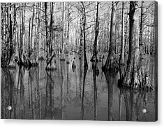 Forgotten - Black And White Art Print Acrylic Print