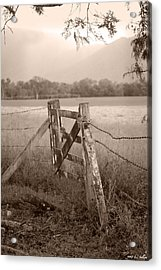 Forgotten Fields 2 Acrylic Print