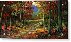 Forgotten Road Acrylic Print by Frank Wilson