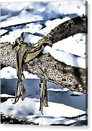 Forgotten Saddle Acrylic Print