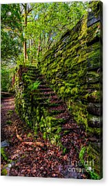 Forgotten Steps Acrylic Print by Adrian Evans