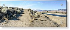 Fork In The Road Acrylic Print
