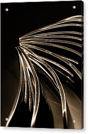 Forks Acrylic Print by Claire Hull