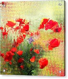 Formas Y Flores Acrylic Print by Alfonso Garcia