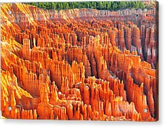 Formations At Bryce Canyon Ampitheater Acrylic Print by Jay Mudaliar