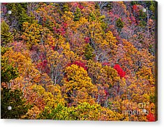 Fort Mountain State Park Cool Springs Overlook Acrylic Print by Bernd Laeschke