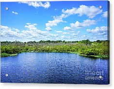 Fort Pierce Florida Savannah II Acrylic Print