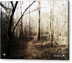 Acrylic Print featuring the photograph Fort Yargo Trail by Utopia Concepts