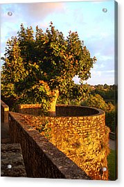 Fortress Tree At Sunset In Le Dorat Acrylic Print