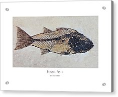 Acrylic Print featuring the digital art Fossil Fish by Julian Perry